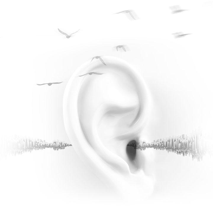 high-end music